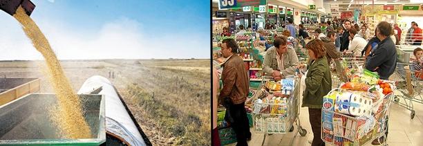La baja en el precio de la soja (U$S 454 promedio en Chicago para 2014) generará menos ingresos para la economía / Foto: archivo www.turello.com.ar