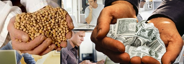 La caída en el precio de la soja (está en niveles de 2009) torna negativo el negocio del alquiler de campos | Imagen: archivo Turello.com.ar