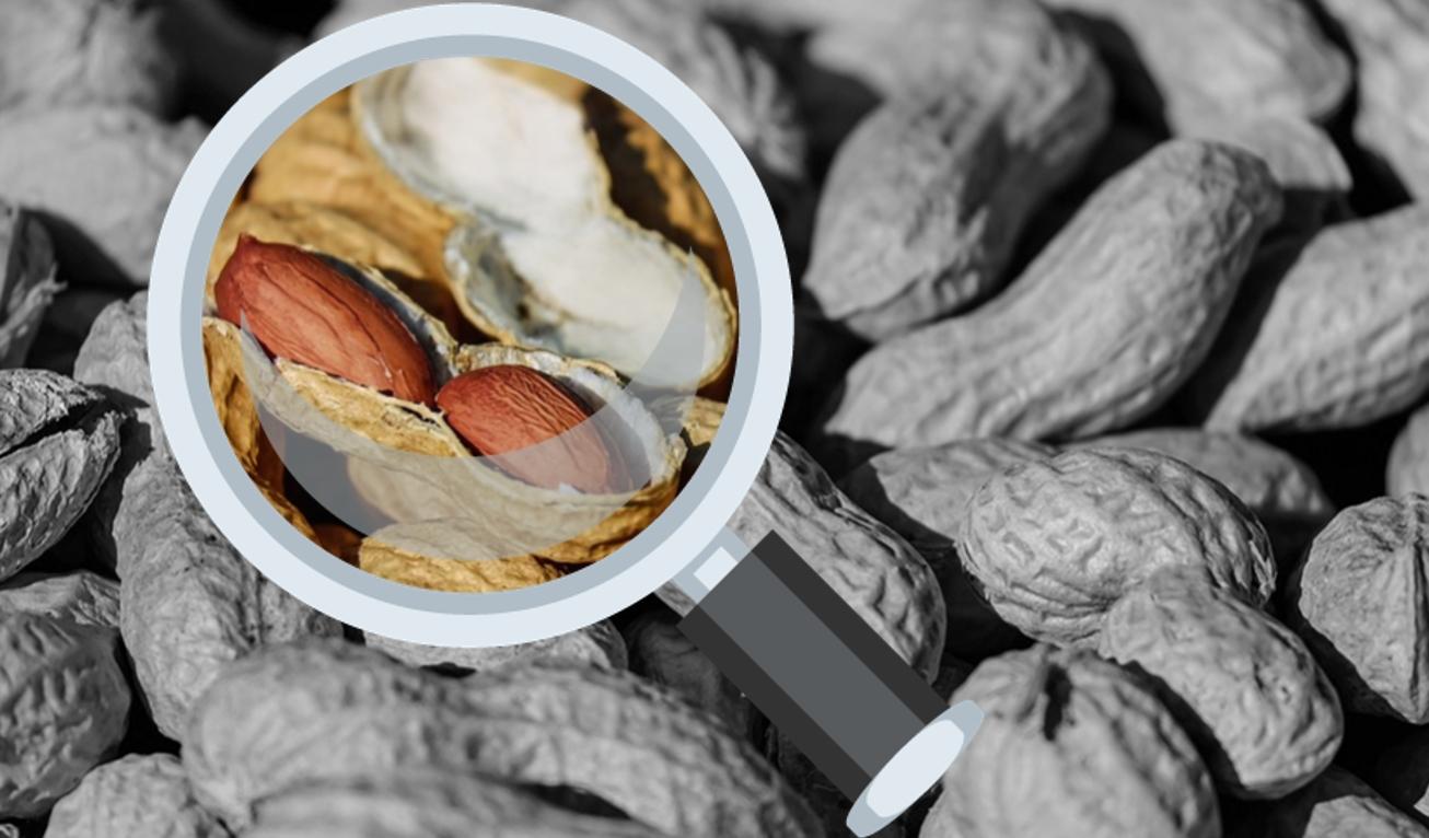 Apoyo a las investigaciones sobre el maní | Ilustración editada digitalmente en base a imágenes de Coleur (Pixabay.com) y emoji.co.uk.