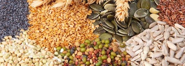 BCCBA pide una nueva ley de semillas que considere los avances tecnológicos | Imagen publicada en feedagora.com