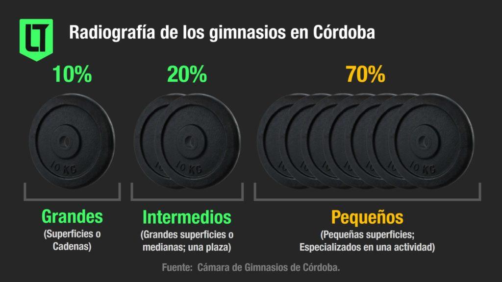 Radiografía de los gimnasios en Córdoba y segmentación del sector   Infografía: Los Turello de bolsillo.